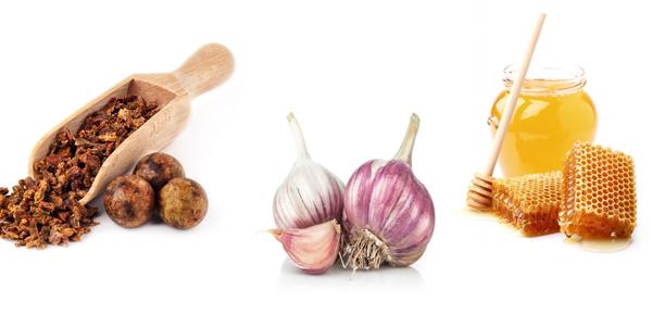 Naturalne Antybiotyki – Ziołowe i Roślinne