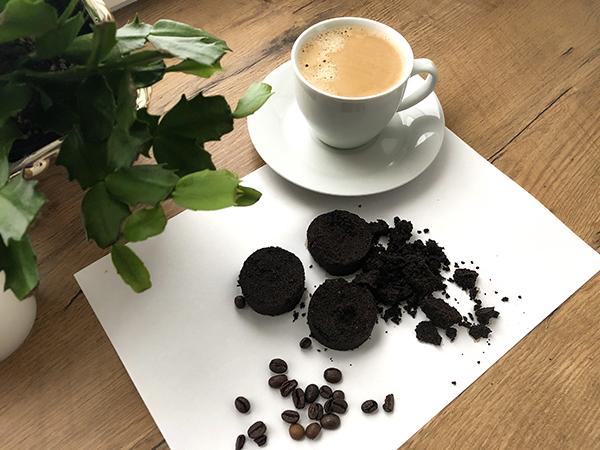 Fusy z Kawy w Ogrodzie – Sprawdź Jak Mogą Pomóc Twoim Roślinom