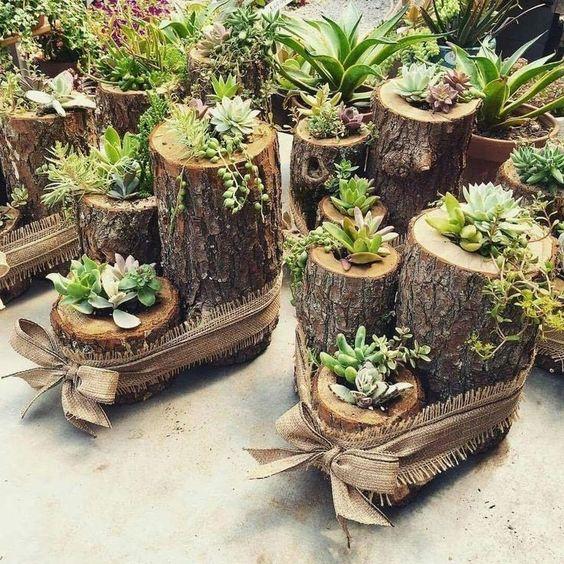 Jak Wykorzystać Pnie Drzew w Ogrodzie? – TOP 24 Kreatywne Pomysły