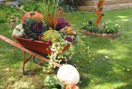 Dekoracje Ogrodowe na Jesień – TOP 24 Inspiracje na Piękny Ogród